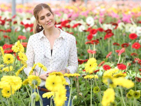 sandra barata belo rainha das flores florineve